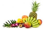 BHZ Tropical bavaroise 100 gram